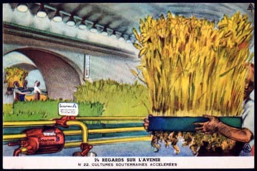 In the future, two visions of the transformation of agriculture: artificial light, and the transformation of urban underground spaces